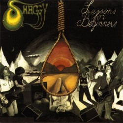 Shaggy – Lessons For Beginners - LP Vinyl Album -