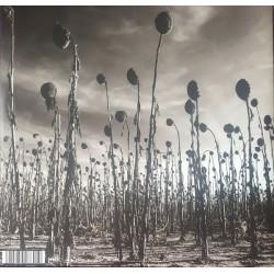 Dead Can Dance – Anastasis - Double LP Vinyl Album - Edition 180Gr.
