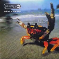 Prodigy – The Fat Of The Land - Double LP Vinyl Album - Electronic Breakbeat