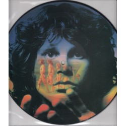 The Doors ‎– Light My Fire - LP Vinyl Album - Picture Disc Edition - 10 inches 25cm - Classic Rock 70's