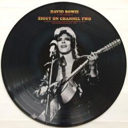David Bowie ‎- A Further Exploration Of Ziggy On Channel Two - LP Vinyl Album - Picture Disc - Glam Rock