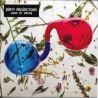Dirty Projectors – Lamp Lit Prose - CD Album Promo - Indie Rock