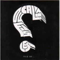 Les Fils Du Calvaire – Fils De ... - CDr Album Cardboard - Promo - Electro Pop