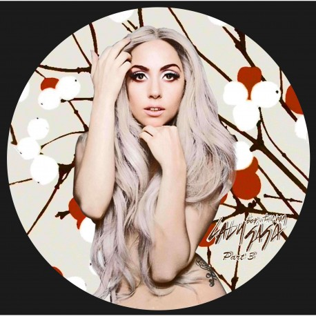 Lady Gaga – Born This Way Part 3 - Maxi Vinyl 12 inches - Picture Disc - House Pop Music