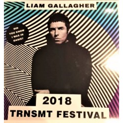 Liam Gallagher ‎(Oasis) - TRNSMT Festival 2018 - Lp Vinyl Album - Brit Pop
