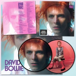 David Bowie - Space Oddity - Limited Edition - LP Vinyl Album - Picture Disc + Poster - Glam Rock