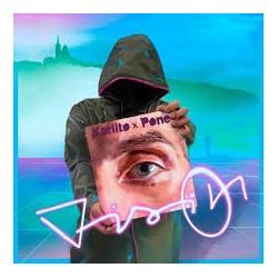 Karlito x Pone (Fonky Family) - Vision - LP Vinyl Album - Rap Français