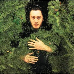 Alain Bashung ‎– Fantaisie Militaire - LP Vinyl Album - Coloured Green - Rock Français
