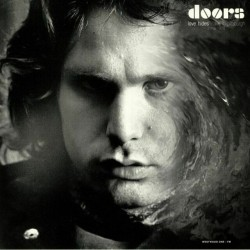 The Doors ‎– Live In Pittsburgh - May 2, 1970 - Double LP Vinyl Album - Psychedelic Rock
