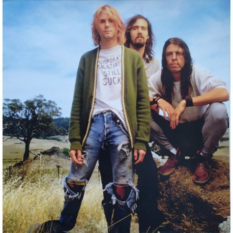 Nirvana ‎- Come As You Are - Picture Disc - Vinyl 10 inches - Grunge Rock