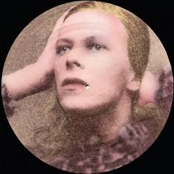 David Bowie – Hunky Dory - Picture Disc - LP Vinyl Album - Glam Rock