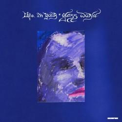 CitiZen - Life In Your Glass World - LP Vinyl Album - Indie Rock Punk
