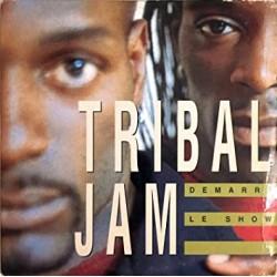 Tribal Jam - Démarre Le Show - Maxi Vinyl 12 inches - RnB Français