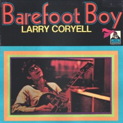 Larry Coryell - Barefoot Boy - LP Vinyl Album - Jazz Rock Fusion