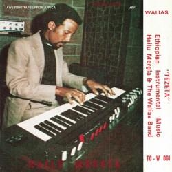 Hailu Mergia & The Walias Band - Tezeta - LP Vinyl Album - African Music