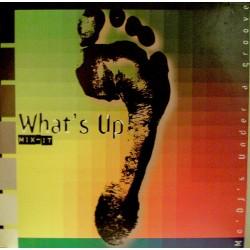 What's Up Mix-It - Mo' DJ's Under A Groove - Double LP Vinyl Album - Trip Hop Acid Jazz Deep House