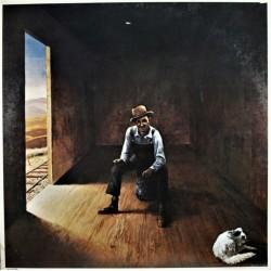 Don McLean - Homeless Brother - LP Vinyl Album - Country Folk Music