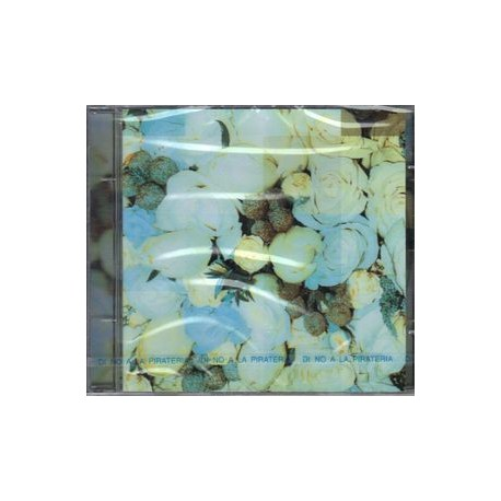 Céline Dion - A New Day Has Come - CD Maxi Single Promo