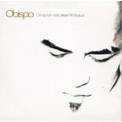 Pascal Obispo ‎– Ce Qu'On Voit, Allée Rimbaud - CD Single