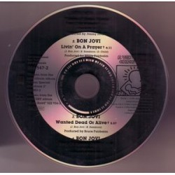 Bon Jovi ‎- Please Come Home For Christmas - CD Single Promo
