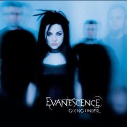 Evanescence ‎- Going Under - CD Maxi Single
