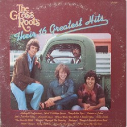 The Grass Roots - Their 16 Greatest Hits - LP Vinyl