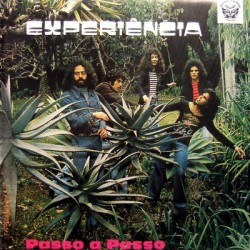 Experiencia ‎– Passo A Passo - LP Vinyl