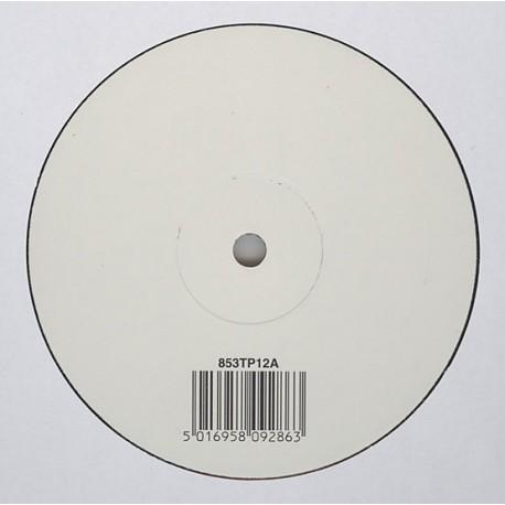 Björk - Wanderlust - Maxi Vinyl White Label