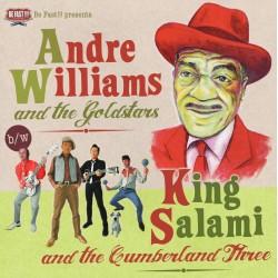 André Williams & King Salami - Compilation - LP Vinyl
