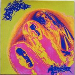 Motorpsycho – Lobotomizer - LP Vinyl