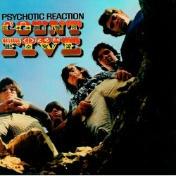 Count Five ‎– Psychotic Reaction - LP Vinyl