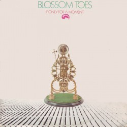 Blossom Toes ‎– If Only For A Moment