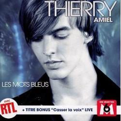 Thierry Amiel – Les Mots Bleus - CD Single ( Jarre )