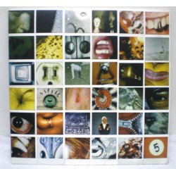 Pearl Jam ‎– No Code - LP Vinyl - Coloured White