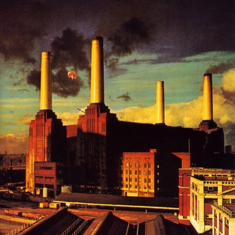 Pink Floyd – Animals - Coloured Record - LP Vinyl