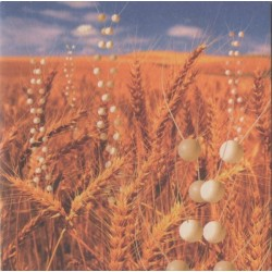 Télépopmusik – Genetic World - CD Album Promo - Cardboard Sleeve