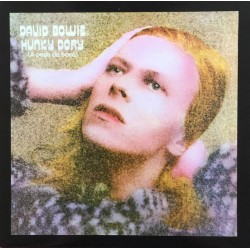 David Bowie ‎– Hunky Dory (A pedir de boca) - LP Vinyl Album - Coloured White