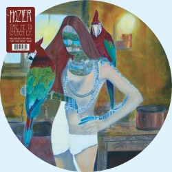 Hozier ‎– Take Me To Church - Maxi Vinyl Picture Disc - Record Store Day