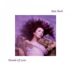 Kate Bush ‎– Hounds Of Love - LP Vinyl Album