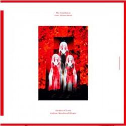 The Limiñanas, Peter Hook – Garden of Love Andrew Weatherall Remix