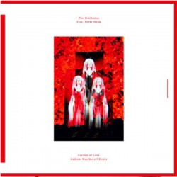 The Limiñanas feat. Peter Hook – Garden of Love - Andrew Weatherall Remix - Maxi Vinyl 12 inches - Coloured Clear