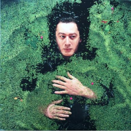 Alain Bashung – Fantaisie Militaire - LP Vinyl Album