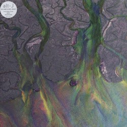 Alt-J ‎– An Awesome Wave - LP Vinyl Album + MP3 Code