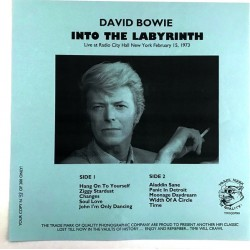 David Bowie ‎– Into The Labyrinth - LP Vinyl Album - Limited Edition