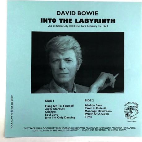 David Bowie – Into The Labyrinth - LP Vinyl Album - Limited Edition