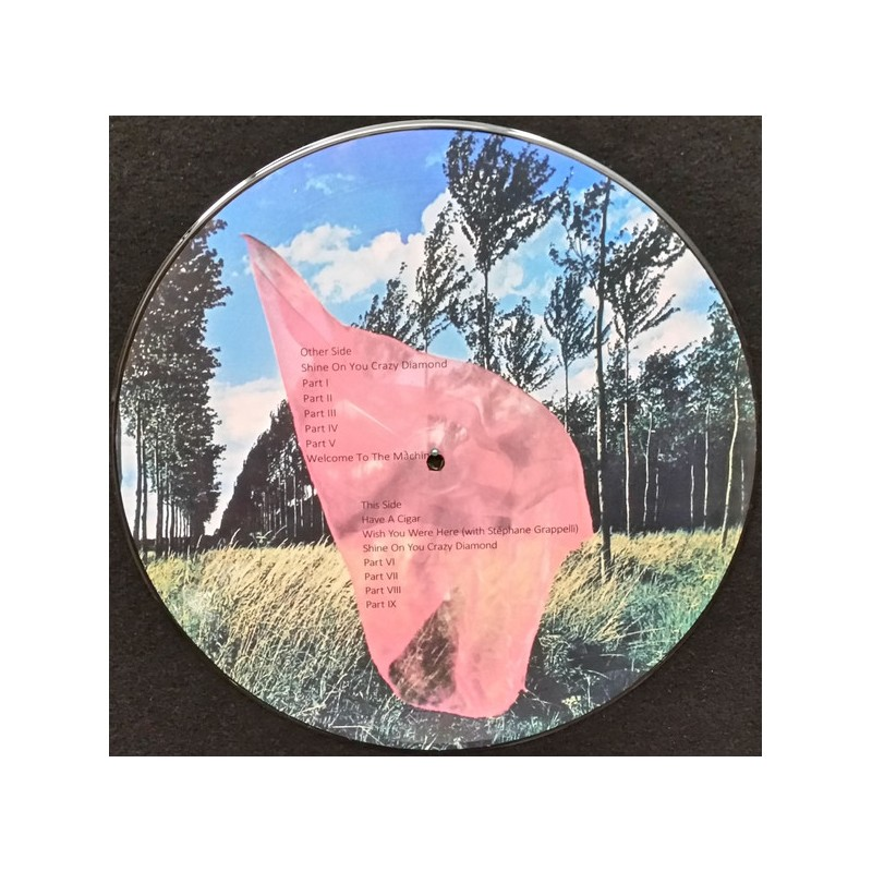 Album vinyle Pink Floyd, Wish You Were Here, picture disc