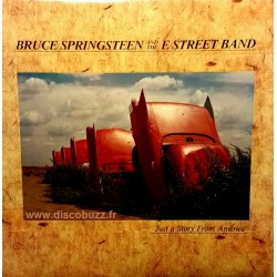 Bruce Springsteen – Just A Story From America - LP Vinyl Album
