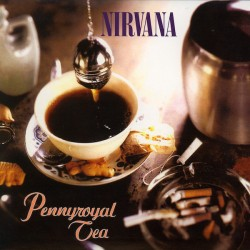 Nirvana ‎– Pennyroyal Tea - Vinyl 7 inches 45rpm - Record Store Day