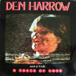 Den Harrow ‎– A Taste Of Love - Maxi Vinyl 12 inches