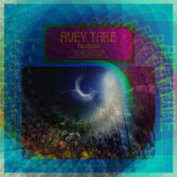 Avey Tare – Eucalyptus - Double LP Vinyl Album + MP3 Code